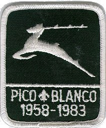 40th Anniversary patch